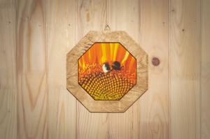 Fotopaveikslai ant drobės mediniame rėmelyje